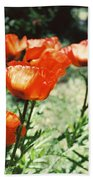 Poppies Beach Towel