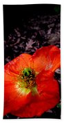 Poppy At Dusk Beach Towel