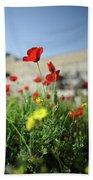 Red Poppy Flower On The Meadow Beach Sheet