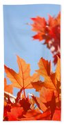 Popular Autumn Art Red Orange Fall Tree Nature Baslee Troutman Beach Towel