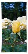 Portland Roses #3 Beach Towel