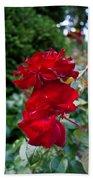 Portland Roses #6 Beach Towel