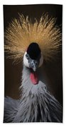 Portrait Of A Crowned Crane 2 Beach Towel