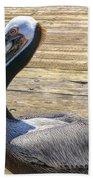 Portrait Of A Pelican Beach Towel