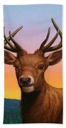 Portrait Of A Red Deer Beach Towel by James W Johnson