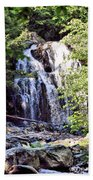 Portrait Of Houston Brook Falls Beach Towel