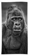 Portrait Of King Kongs Cousin IIi Beach Towel