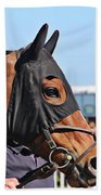 Portrait Of The Horse In The Hood Beach Towel