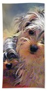 Portrait Of Yorkshire Terrier Puppy Dogs Beach Towel