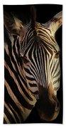 Portrait Of Zebra Beach Towel