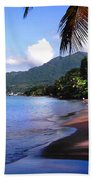 Portsmouth Shore On Dominica Filtered Beach Towel