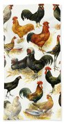 Poultry Beach Towel