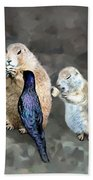 Prairie Dogs And A Bird Eating Beach Towel