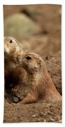 Prairie Dogs Beach Towel