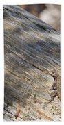 Prairie Lizard _ 1a Beach Towel