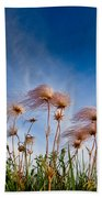 Prairie Smoke Beach Towel