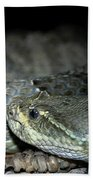 Prarie Rattle Snake Beach Towel