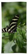 Precious Black And White Zebra Butterfly In The Spring Beach Towel