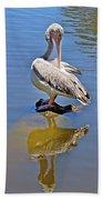 Preening Pelican Beach Towel