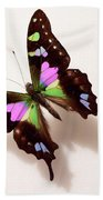 Pretty Butterfly Beach Towel