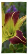 Pretty Flowering Lily In A Garden  Beach Towel
