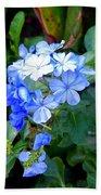 Pretty In Blue Photograph Beach Towel
