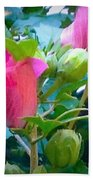 Pretty In Pink Hibiscus Flowers And Buds Beach Towel