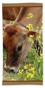 Pretty Jersey Cow Square Beach Towel