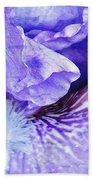 Pretty Purple Beach Towel