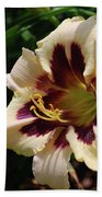 Pretty Single Blooming Daylily In A Garden Beach Towel