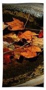 Priceless Leaves Fall Beach Sheet