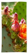 Prickly Pear Blooms Beach Towel