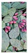 Prickly Pear Cactus Fruits Beach Sheet