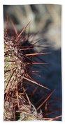 Prickly Pear  Beach Towel