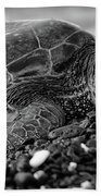 Profile Hawaiian Sea Turtle Bw Beach Towel