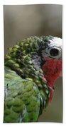 Profile Of A Conure Parrot Up Close Beach Towel