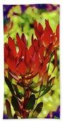 Protea Flower 4 Beach Sheet