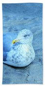 Proud Bird Beach Towel