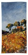 Provence 6741254 Beach Towel
