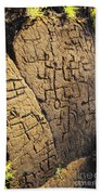 Puako Petroglyphs Beach Towel