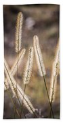 Foxtails In The Marsh Beach Towel
