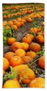 Pumpkin Patch Beach Towel