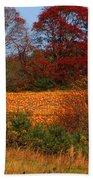 Pumpkin Patch Beach Sheet