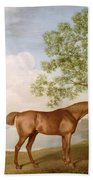 Pumpkin With A Stable-lad Beach Towel by George Stubbs