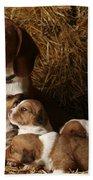 Puppies Beach Towel
