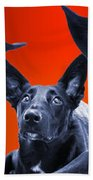 Puppy Dog Panoramic Montage Beach Towel