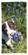 Puppy In The Blubonnets Beach Towel
