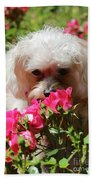 Puppy With Roses Beach Towel