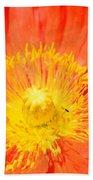 Pure Poppy Sunshine Beach Towel