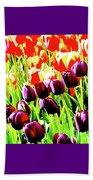 Purple And Peach Tulips 2 Beach Towel